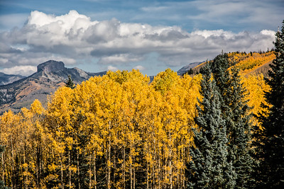 Square Top with V Mountain Aspens