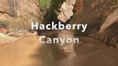 Hackberry Narrows Video