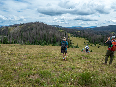Starting to mosey through the high meadows. We are heading to the next ridgetop on the left of center.