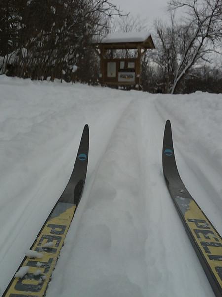 1/12/2009 Maybury State Park ski trail leading to mountain bike trail head.<br /> Sent from my Verizon Wireless BlackBerry