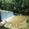 Dam on Blackwater Creek I (01358)