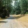 Blackwater Creek Trail Footpath IV (01355)