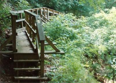 Bridge on the Blackwater Creek Trail VI (01350)