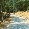 Blackwater Creek Trail Footpath III (01354)