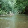 Blackwater Creek (01356)