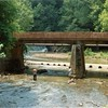 Blackwater Creek Culvert I (01362)
