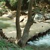Blackwater Creek Culvert II (01363)