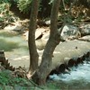 Blackwater Creek Culverts II (01363)
