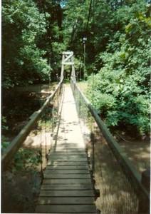 Bridge on the Blackwater Creek Trail V (01349)