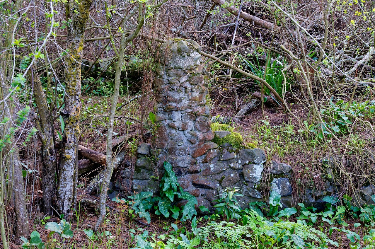 What remains of a house built here over 100 years ago...