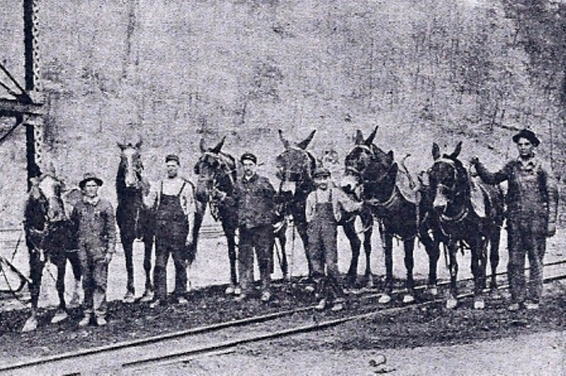 Vinton Colliery Mules and Workers