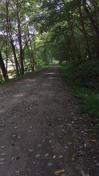 Near Wehrum along Blacklick Creek
