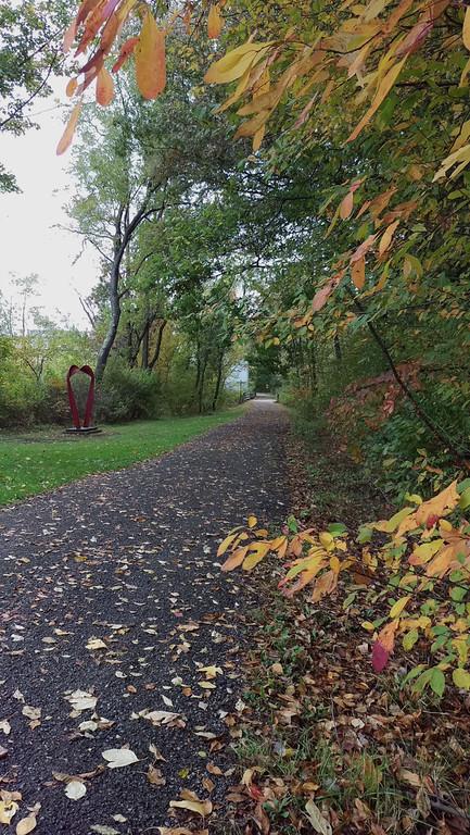 Fall on the Hoodlebug Trail