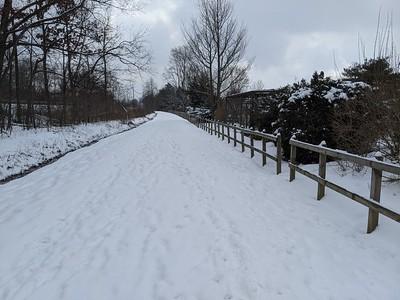 The Snowy Hoodlebug