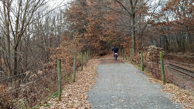 Rail with Trail