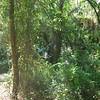 Day Hike - 04/18/09<br /> Photo Credit: Amanda Hus