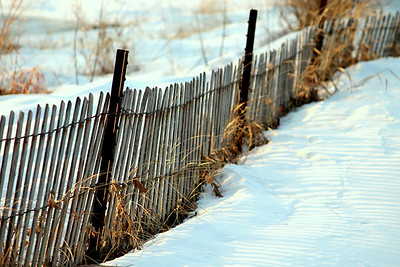 Snow-fence on the Beach
