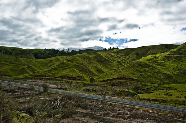 Hill side North Island Te Ika a Maui New Zealand - Aug 07