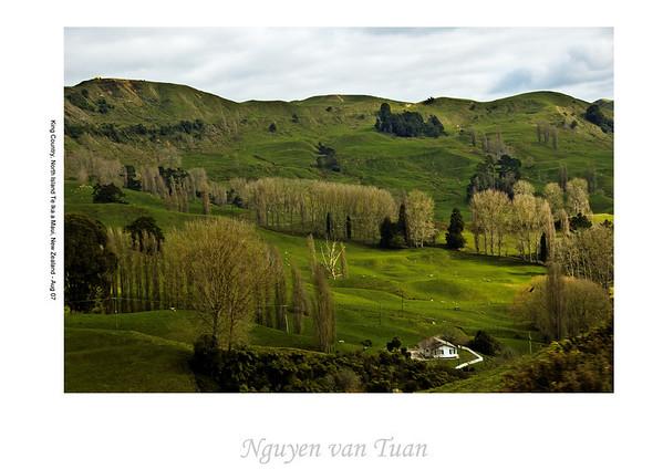 King Country North Island Te Ika a Maui New Zealand - Aug 07