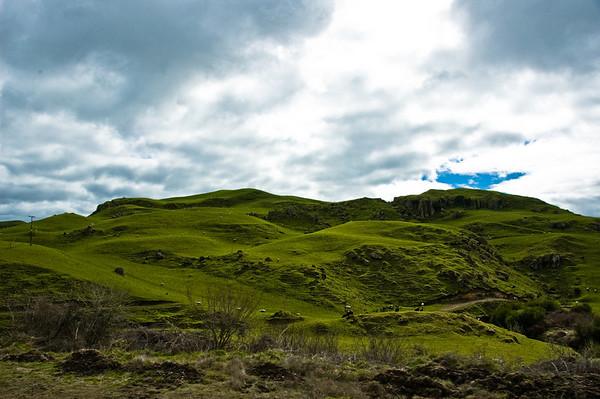 Waikato hill pastures New Zealand - Aug 07