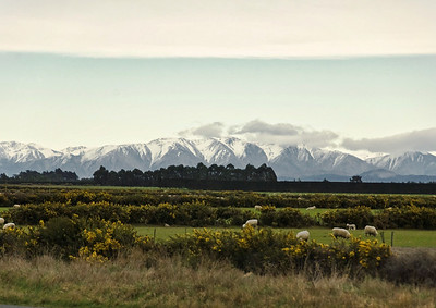 The Noreaster Gap Canterbury South Island Te Wai Pounamu