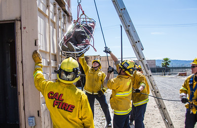 Rescue Systems 1 (By Brandon Barsugli)