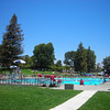Rancho Simi Pool in the Summer!