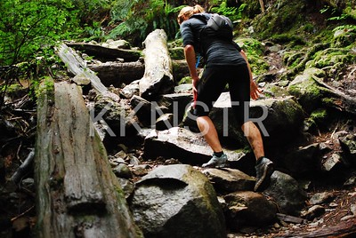 Boulders and a few tree trunks