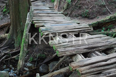 Bouncing bridge crossing near Brothers Creek
