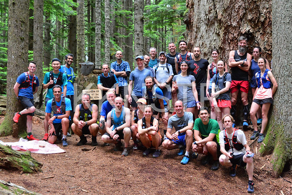 Jul 4, 2018 - Hollyburn Fir