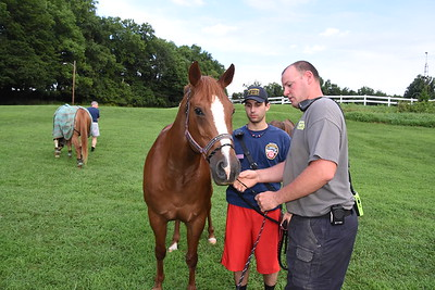 8/15/16 Large Animal Rescue