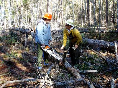 2008 November Chainsaw Training - Osceola
