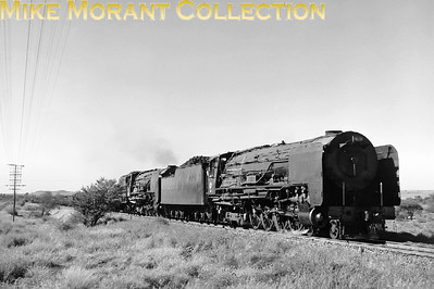 """South African steam railways - Cape Northern System. A pair of South African Railways 25NC-class 4-8-4 locomotives head a freight train on the Kimberley - Bloemfontein line in 1978. The first is a Henschel-built original version, whilst the second is a rebuilt 25-class condensing locomotive. The removal of the condensing apparatus had resulted in the cut-down appearance of their extra-long tenders; as a result, the converted locos soon became known as """"Worshonde"""" (i.e. """"sausage dogs"""" = dachshunds)! [A.E. """"Dusty"""" Durrant / Mike Morant collection]"""