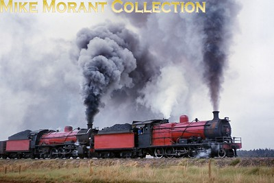 """South African industrial steam railways. Heading a coal train to the interchange sidings at Blackhill (Witbank district, Transvaal), two of Apex Mines' red-liveried ex-South African Railways locomotives climb away from Greenside Colliery in 1975. Originally delivered to the Natal Government Railways, class 1 4-8-0 No. 2 (NGR 307, SAR 1277 - NBL 16402/1904) leads class 4AR 4-8-2 No. 1 (ex-SAR No. 1557 - NBL 20231/1913).  [A.E. """"Dusty"""" Durrant / Mike Morant collection]"""