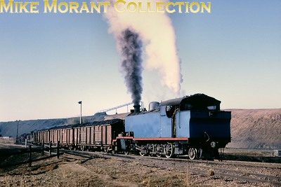 """South African industrial steam railways Albion Collieries' unnumbered 4-8-2T locomotive (previously Witbank Colliery No. 3) hauls loaded coal wagons at Bezuidenhoutrus (Witbank/Vandyksdrif district, Transvaal) in 1981. A """"standard"""" North British Locomotive Company industrial tank, it had been supplied to Witbank Colliery [under Hyde Park (Glasgow) works number 24599/1940]. [A.E. """"Dusty"""" Durrant / Mike Morant collection]"""