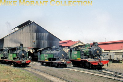 South African industrial steam railways East Rand Proprietary Mines nos. 1, 2, 8 & 10. [Mike Morant collection]