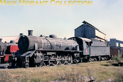 """South African industrial steam railways Ex-South African Railways class 19B 4-8-2 No. 1402 at New Largo Colliery (Arbor, Transvaal) in 1979. It had been built by Berliner Maschinenbau / Schwartzkopff [under works number 9828/1930]. [A.E. """"Dusty"""" Durrant / Mike Morant collection]"""