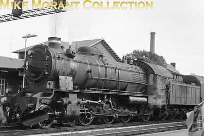 DSB  - Danish State Railways - 'H' class 2-8-0 no. 800 but the date and location aren't stated. No. 800 is still with us today as a heritage loco. [Mike Morant collection]