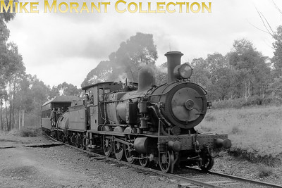 AUSTRALIAN STEAMNew South Wales Government Railways  30T-class 4-6-0 No. 3144 heads a farewell working to Wagga Wagga c.1971. This was one of a number of the original S-class 4-6-4T locomotives later rebuilt as tender engines.. [A. E. 'Dusty' Durrant / Mike Morant collection]