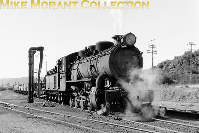 NZR (New Zealand Railways) B class 4-8-0 no. 303 at Stillwater on September 1st, 1966 with the shunting service from Ngahere to Greymouth. Photographed by John Brouwer [Mike Morant collection]