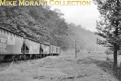 Buffalo Creek & Gauley rolling stock train in the woods returning from the mines in August, 1958. Such shots are, apparently, scarce and could be obtained only by riding on the train [Photographer: R. E. Field/Mike Morant collection]