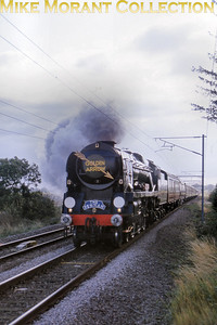 The preserved rebuilt Bulleid West Country pacific no. 34027 'Taw valley' accelerates over the summit north of Queen Adelaide with her Golden Arrow insignia looking just right and the Fenman headboard distinctly out of place during the splendidly organised 'Fen Line Steam Weekend' of the 19th and 20th October 1991.