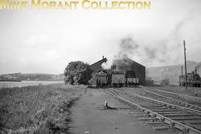 Vintage Irish Railways - Northern IrelandDerry shed panorama on 4/9/53.