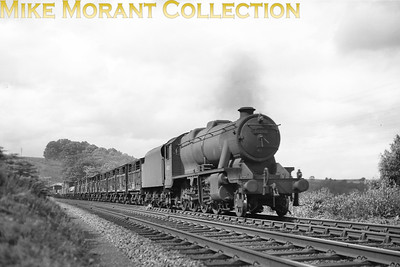 Stanier 8F 2-8-0 no. 48285 in charge of a Down goods including cattle wagons with occupants at Baron Wood on the S & C. [Mike Morant collection]