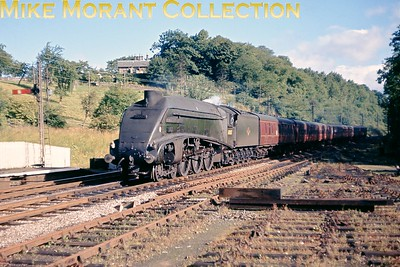 Gresley A4 pacific No. 60007 Sir Nigel Gresley is about to pass through Bridge of Allan station with an Aberdeen Glasgow 3-hour express on August 30th 1964. This image has been published twice in 1984 and 2012. [Slide taken by Mike Morant]