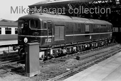 An undated view of Bulleid 1-Co-Co-1 diesel no. 10202 in its original black livery at Euston station. [Mike Morant collection]