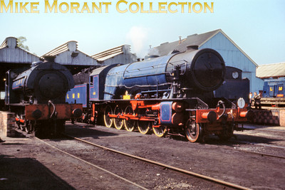 The Longmoor Military Railway during the open day on April 30th 1966 elicited this portrait of WD 2-10-0 No. 600 Gordon resplendent as usual in that exquisite blue livery enhanced on this occasion by the rich blue sky. The J94 0-6-0ST at the left is No. 195.