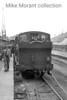 <b>RCTS: Wessex Wyvern 8/7/56</b><br> The mainline stock hauled by Collett outside cylinder 1366 class 0-6-0PT no. 1368 after arrival at Weymouth Quay station but what happened next is open to question. The sixbellsjunction railtours web site opines that classmate no. 1370 was used for the return journey to Weymouth Junction and that could well  be true because the loop at the Quay station was blocked by at least one wagon which is evident in another picture in this series.<br> [<i>Mike Morant collection</i>]