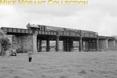 SLS: Last Train on the Shropshire and Montgomeryshire Railway 20/3/60 Austerity J94 0-6-0ST WD193 depicted during a photo stop on Shrawardine viaduct. [Mike Morant collection]