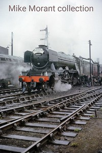 The Gresley Society : London - North Eastern Flyer 2/5/64 LNER Gresley A3 pacific 60106 Flying Fox in her final form pauses for water at Peterborough North prior to a speedy journey to Doncaster where 4472 took over the duty to York and Darlington. 60106 did, indeed, fly as noted on the sixbellsjunction web site which informs us that the depicted engine attained 95 mph on the descent of Stoke bank during the return journey. I was a passenger on this trip and I recall the buzz of anticipatation at the time as we started the climb from Grantham.  After a distinguished career of 41 years she was withdrawn from New England mpd only seven months after this picture was taken.she was withdrawn from New England mpd only seven months after this picture was taken.
